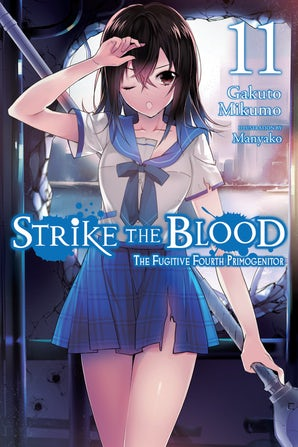 strike-the-blood-vol-11-light-novel