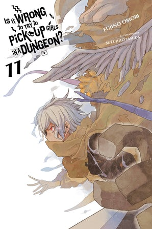 Is It Wrong to Try to Pick Up Girls in a Dungeon?, Vol. 11 (light novel)