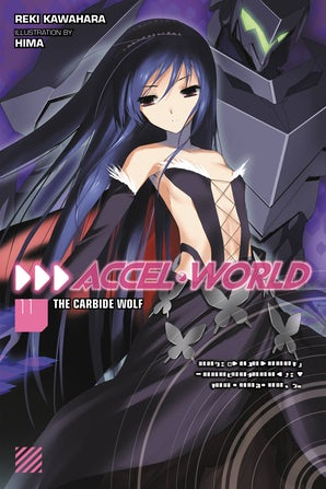 Accel World, Vol. 11 (light novel)