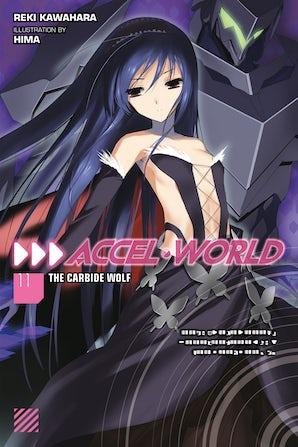 Accel World, Vol. 11 (light novel)