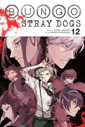 Bungo Stray Dogs, Vol. 12