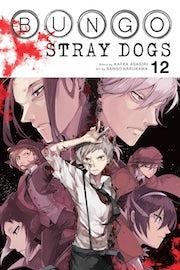 bungo-stray-dogs-vol-12