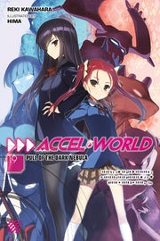 accel-world-vol-19-light-novel