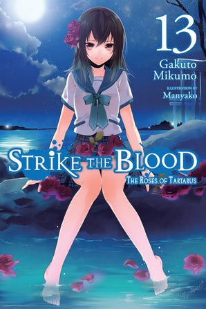 strike-the-blood-vol-13-light-novel